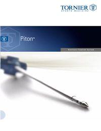 Piton Anchor